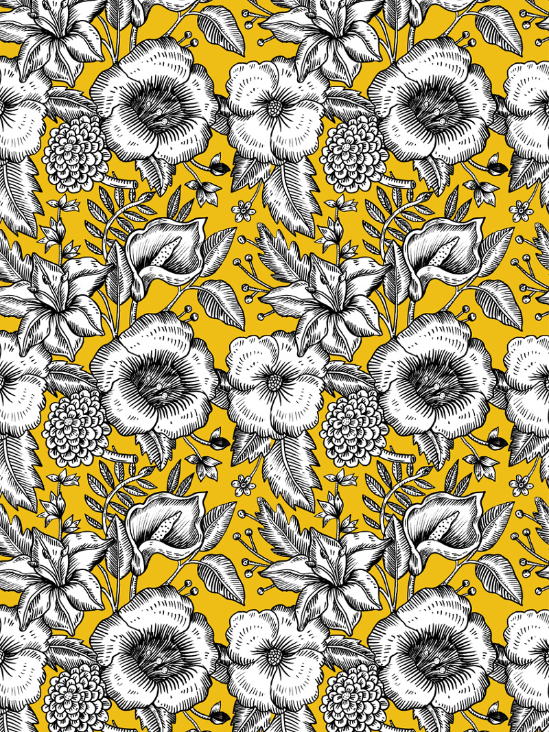 pretty patterns aitch house illustration vector house illustrations free